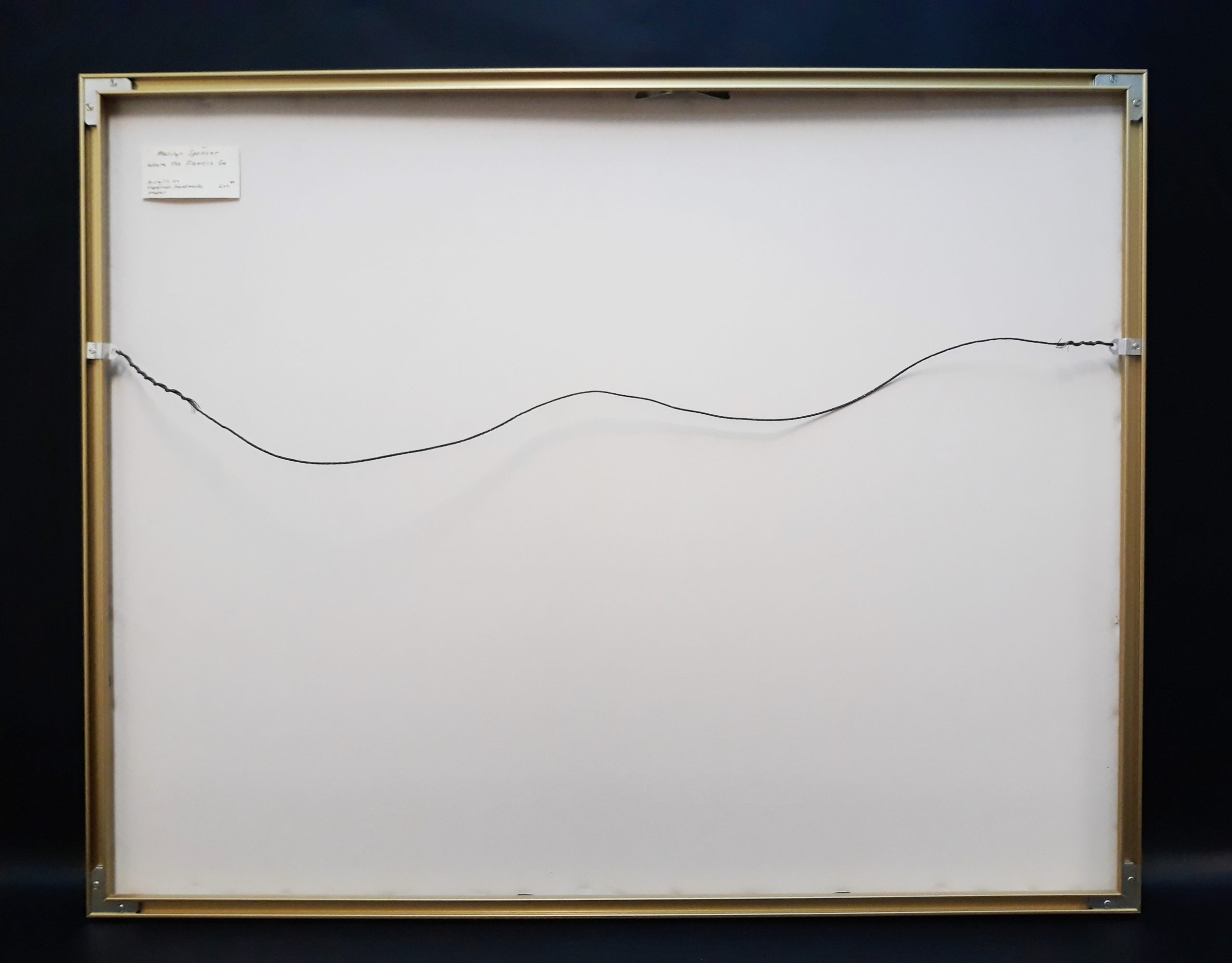 Marilyn Spencer - Framed acrylic on paper