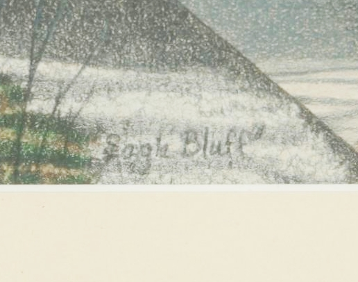 "Sally Gauger Jensen ""Eagle Bluff"""